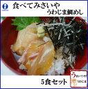 愛媛宇和島 鯛めし5食セット(秀長水産)■健康真鯛を使用 素朴で豪快なふるさとの味 宇和海産 郷土料