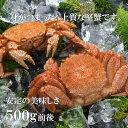 北海道オホーツク産【...