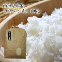山形県産ササニシキ【うまいず極上米】10kg【無洗米】