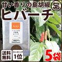 ヒバーチ 袋入り 20g×5袋 送料無料 沖縄 人気 調味料 胡椒 土産 ヒハツ ヒハツモドキ