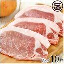 ギフト 山原豚(琉美豚) ≪白豚≫ ロース ステーキ用 120g×10枚 送料無料 トンテキ