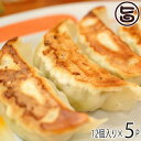 ショッピングギョウザ ギフト フレッシュミートがなは 山原豚(琉美豚) 白豚ギョウザ 12個入り×5P 沖縄 土産 アグー 貴重 肉 ビタミンB1 条件付き送料無料