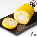 がんばるけん 熊本 冷凍からし蓮根(約90g×6本) 条件付き送料無料 熊本県 九州 名物 人気 定番