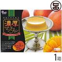 マンゴープリン アップルマンゴー使用 濃厚 贅沢果汁2