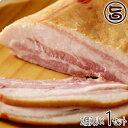 南ぬ豚 特選ギフト (手揉みベーコン) ×2セット 送料無料 沖縄 国産 人気 肉 ギフトセット