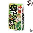 沖縄 海ぶどうせんべい 100g×1袋 送料無料 沖縄 土産 定番 人気