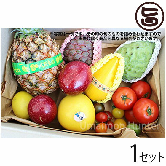 美ら島野菜果物お任せセット 果物メインM 条件付...の商品画像