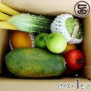 美ら島野菜果物お任せセット 果物メインS 条件付き送料無料 沖縄 土産 人気 南国フルーツ 野菜