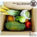 美ら島野菜果物お任せセット お試しセット 条件付き送料無料 沖縄 土産 人気 南国フルーツ 野菜