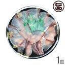 島根大田鮮魚市場 天然 寒ブリ薄造り 1〜2人前 90g×1皿 島根県 新鮮 人気 希少 高級ぶり