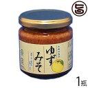 ゆずみそ 200g×1瓶 送料無料 高知県 四国 フルーツ 人気 調味料 お土産 味噌