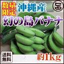 沖縄産 数量限定 幻の島バナナ 約1kg 送料無料 沖縄 フルーツ お土産