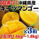 沖縄産 キーツマンゴー 2玉 (約1.6kg - 1.8kg)×3箱 送料無料 沖縄 人気 南国フルーツ 希少