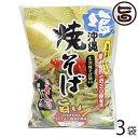 沖縄 塩焼きそば (袋) 2食入り×3袋 こだわりの生めんとチャンプルー塩味のソース 沖縄