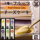 6種のフルーツチーズケーキ詰め合わせ 6種類×各1個 カスターニャ 広島 土産 スイーツ 人気 ケーキ 条件付き送料無料