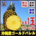 いっぺー あまさん ゴールドバレル 1玉 約1.5〜2.0キロ 送料無料 沖縄産パイナップル 沖縄の太陽をサンサンと浴びた 無農薬 有機栽培 パインアップル フルーツ