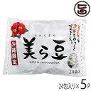 美ら豆 (大) 240g(10g×24包)×15袋 送料無料 沖縄 おつまみ 人気 土産