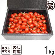 ギフト GINZA FARM 高糖度プレミアムトマト 1kg ギフト箱入り 条件付き送料無料 新鮮 高級 甘いとまと 産地直送