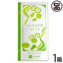 柚子茶 いっしょうが 18g×9包×1箱 しょうが湯 国産 送料無料