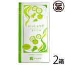柚子茶 いっしょうが 18g×9包×2箱 しょうが湯 国産 送料無料