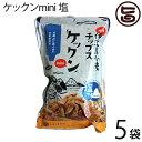 ケックンmini 塩 60g×5袋 沖縄伊江島小麦チップス お菓子 カラッとサッパリ! 送料無料