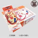 日の出製粉 ロン龍ラーメン ごま塩味 1人前15入 ノンフライ麺 味わい深い塩味のスープ 熊本 土産 ご当地 ラーメン 送料無料