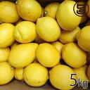 瀬戸内 レモン 約5kg 箱 満杯詰め M~2L 国産 条件付き送料無料