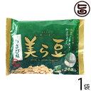 ショッピング琉球 琉球フロント 美ら豆 わさび味 240g×1袋 沖縄 そら豆 沖縄 土産 送料無料