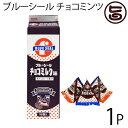 ブルーシール チョコミルク味 18袋入×1P 沖縄物産企業連...