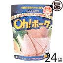 オキハム Oh! ポーク 85g×24P 沖縄 土産 人気 沖縄県産豚肉100%使用 お土産にも最適 送料無料