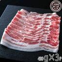 ショッピングbbs JAおきなわ 上原ミート あぐー 豚バラ しゃぶしゃぶ 400g×3P 沖縄 人気 希少 肉 専門店 贈り物にも 送料無料