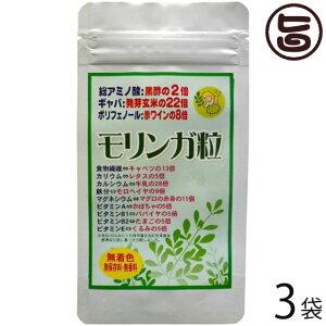 モリンガ粒500 (500粒入/100g)×3袋 沖縄 土産 人気 サプリメント 健康管理 送料無料