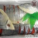 塩本紅鮭 本チャン 1.8kg前後 (20切前後)×1箱 条...