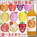 【送料無料】中埜酒造 國盛 果汁リキュールシリーズ選べる選り