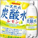 【送料無料】サンガリア 伊賀の天然水炭酸水レモン1L×2ケース(全24本)