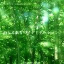 サイモントン療法 メディテーションCD「内なる叡智のメディテーション」【宅配便のみ】