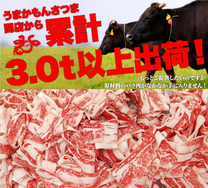 【送料無料】黒毛和牛メガ盛り切り落とし1kgの紹介画像2