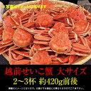 越前せいこ蟹(せこ蟹)大2〜3杯入 津田孫兵衛...