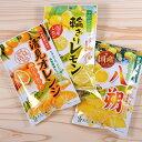 ドライフルーツ 国産 かんきつ系 大袋3種類セット 南信州菓子工房 #605 ※メール便のため配達日時指定不可。