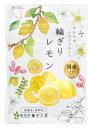 ドライフルーツ 国産 輪ぎり レモン ポケットサイズ (24g)10袋セット 南信州菓子工房 ※メール便のため配達日時指定不可。