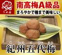 完熟南高梅A級品使用 紀州五代梅 250g(常温対象商品)