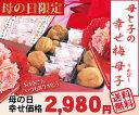【送料無料 母の日ギフト】☆幸せ梅母子(はちみつ梅2種)梅酒の梅ピロ包入 詰合せ特製赤