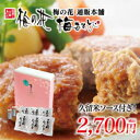 湯葉 豆腐 梅の花豆腐 ハンバーグ セット(6個セット)≪冷凍≫【楽ギフ_のし】【楽ギフ_のし宛書】