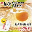 湯葉 豆腐 梅の花梅ゼリー6個入《常温》(※ただし、温度帯が異なる冷凍商品をご注文の