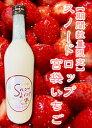 【期間限定】【日本酒ベース】【ヨーグルトリキュール】曙酒造 snowdrop 『宮袋いちご』 720ml