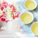【福袋】春よ来い♪ 2月のお楽しみ袋は爽やかできたて四季春茶...