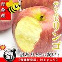 青森県産 サンふじりんご お徳用 10kg 無袋栽培品種 [訳あり][送料無料]【代金引換不可】【RCP】