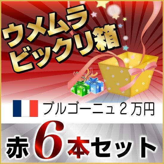 2016年秋 びっくり箱A(ブルゴーニュ赤6本)(2万円)