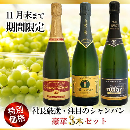 【11月末まで特別価格】社長厳選・注目のシャンパン豪華3本セット