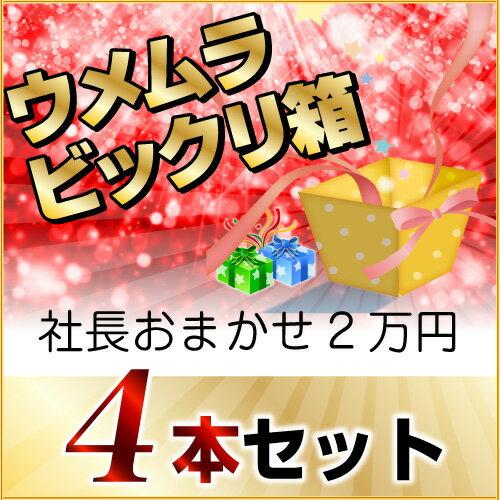 2016年秋 びっくり箱Q(社長おまかせ4本)(2万円)
